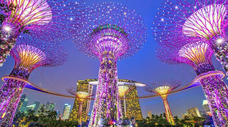 Gardens by the Bay, Singapur ¿Merece la pena visitar los Jardines de la Bahía?